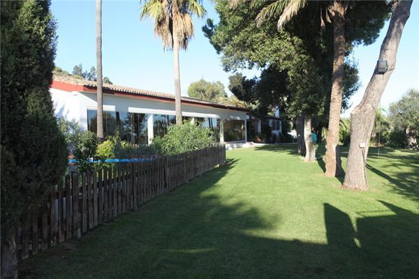 Ample Garden Space